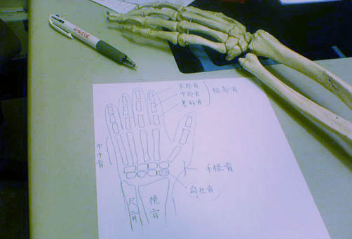 091019hone2.JPG
